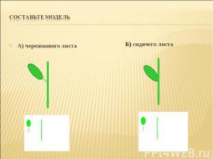 А) черешкового листа А) черешкового листа
