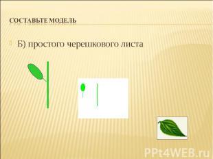 Б) простого черешкового листа Б) простого черешкового листа