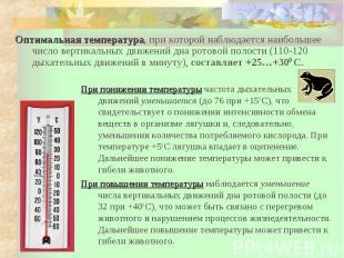 При понижении температуры частота дыхательных движений уменьшается (до 76 при +1