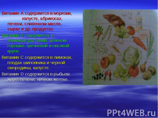Витамин А содержится в моркови, капусте, абрикосах, печени, сливочном масле, сырах и др. продуктах. Витамин А содержится в моркови, капусте, абрикосах, печени, сливочном масле, сырах и др. продуктах. Витамин В содержится в злаковых растений, зеленом…