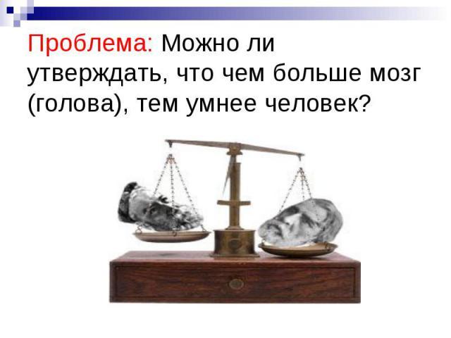 Проблема: Можно ли утверждать, что чем больше мозг (голова), тем умнее человек?