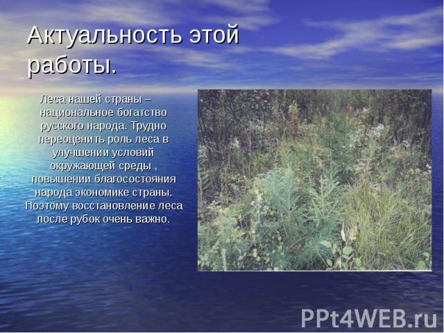 Актуальность этой работы. Леса нашей страны – национальное богатство русского народа. Трудно переоценить роль леса в улучшении условий окружающей среды , повышении благосостояния народа экономике страны. Поэтому восстановление леса после рубок очень…