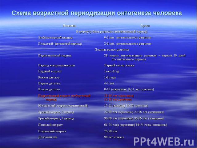 Схема возрастной периодизации онтогенеза человека