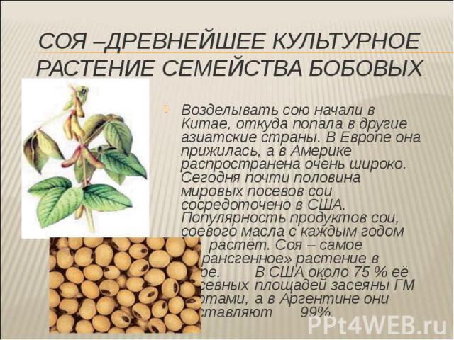 Возделывать сою начали в Китае, откуда попала в другие азиатские страны. В Европе она прижилась, а в Америке распространена очень широко. Сегодня почти половина мировых посевов сои сосредоточено в США. Популярность продуктов сои, соевого масла с каж…
