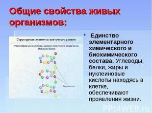 Общие свойства живых организмов: Единство элементарного химического и биохимичес