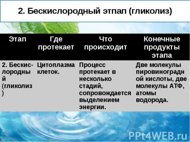 2. Бескислородный этпап (гликолиз)
