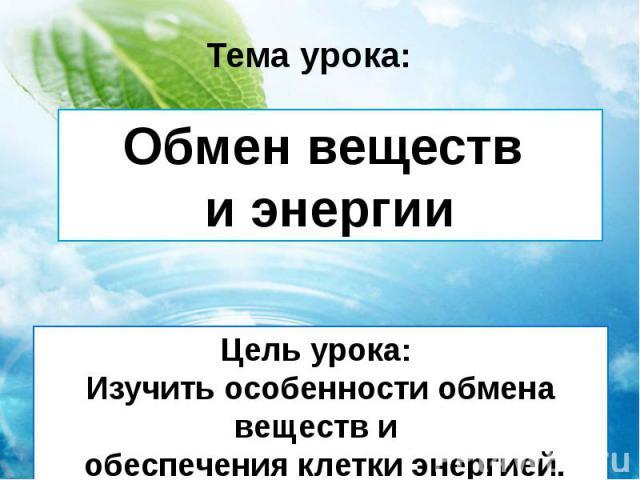 Обмен веществ и энергии