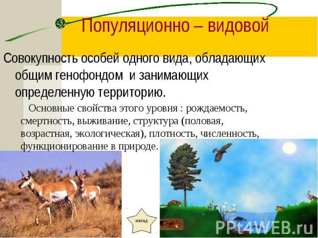 Совокупность особей одного вида, обладающих общим генофондом и занимающих определенную территорию. Совокупность особей одного вида, обладающих общим генофондом и занимающих определенную территорию.