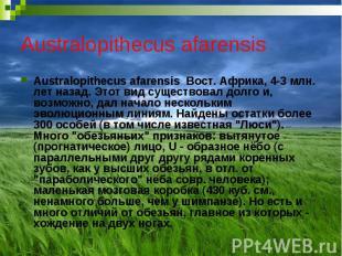 Australopithecus afarensis Australopithecus afarensis Вост. Африка, 4-3 млн. лет