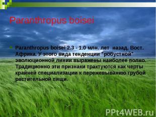 Paranthropus boisei Paranthropus boisei 2.3 - 1.0 млн. лет назад, Вост. Африка.