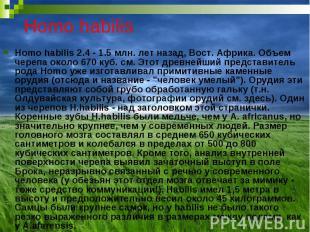 Homo habilis Homo habilis 2.4 - 1.5 млн. лет назад, Вост. Африка. Объем черепа о