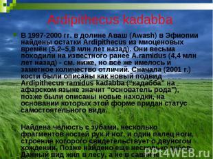 Ardipithecus kadabba В 1997-2000 гг. в долине Аваш (Awash) в Эфиопии найдены ост