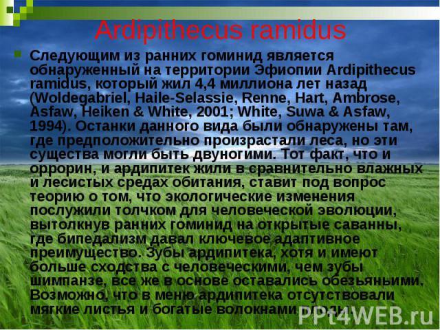 Ardipithecus ramidus Следующим из ранних гоминид является обнаруженный на территории Эфиопии Ardipithecus ramidus, который жил 4,4 миллиона лет назад (Woldegabriel, Haile-Selassie, Renne, Hart, Ambrose, Asfaw, Heiken & White, 2001; White, Suwa &…