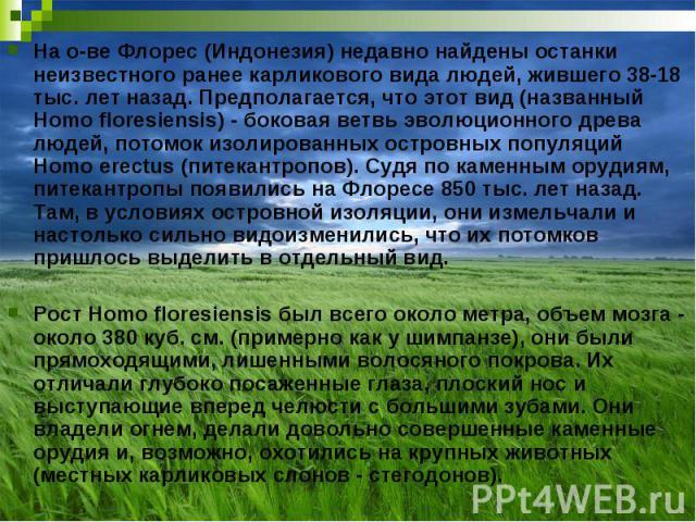 На о-ве Флорес (Индонезия) недавно найдены останки неизвестного ранее карликового вида людей, жившего 38-18 тыс. лет назад. Предполагается, что этот вид (названный Homo floresiensis) - боковая ветвь эволюционного древа людей, потомок изолированных о…