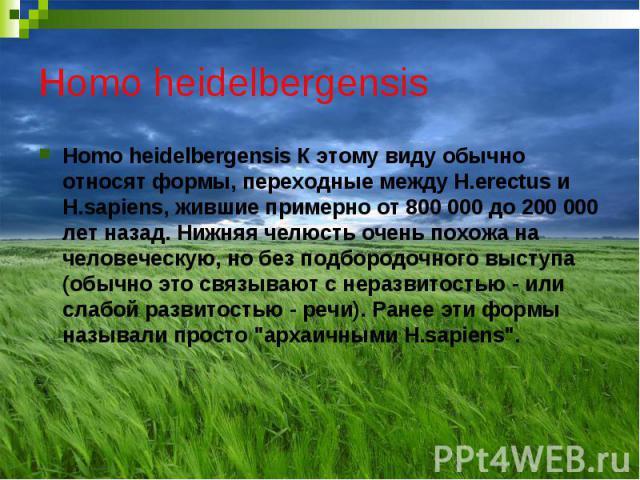 Homo heidelbergensis Homo heidelbergensis К этому виду обычно относят формы, переходные между H.erectus и H.sapiens, жившие примерно от 800 000 до 200 000 лет назад. Нижняя челюсть очень похожа на человеческую, но без подбородочного выступа (обычно …