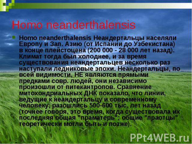 Homo neanderthalensis Homo neanderthalensis Неандертальцы населяли Европу и Зап. Азию (от Испании до Узбекистана) в конце плейстоцена (200 000 - 28 000 лет назад). Климат тогда был холоднее, и за время существования неандертальцев несколько раз наст…