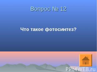 Что такое фотосинтез? Что такое фотосинтез?