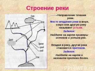 Строение реки Направление течения реки. Место впадения реки в море, озеро или др