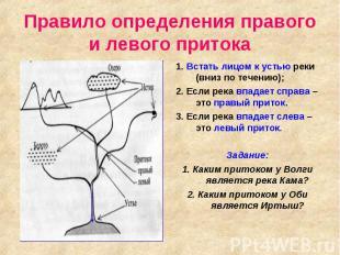 Правило определения правого и левого притока 1. Встать лицом к устью реки (вниз