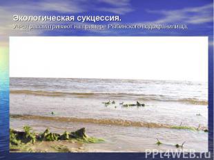 Экологическая сукцессия. Уч-ся рассматривают на примере Рыбинского водохранилища