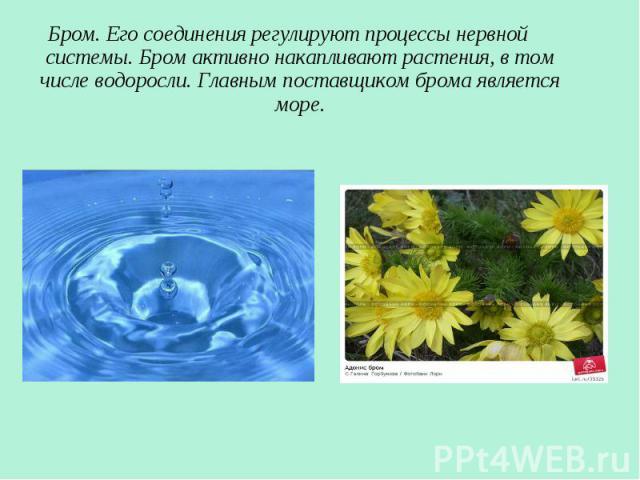 Бром. Его соединения регулируют процессы нервной системы. Бром активно накапливают растения, в том числе водоросли. Главным поставщиком брома является море. Бром. Его соединения регулируют процессы нервной системы. Бром активно накапливают растения,…