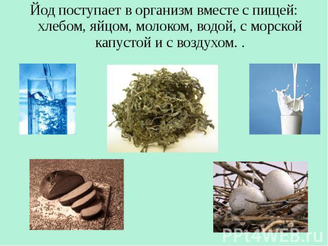 Йод поступает в организм вместе с пищей: хлебом, яйцом, молоком, водой, с морской капустой и с воздухом. . Йод поступает в организм вместе с пищей: хлебом, яйцом, молоком, водой, с морской капустой и с воздухом. .
