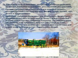 По агрохимическому воздействию минеральные удобрения разделяют напрямые, к