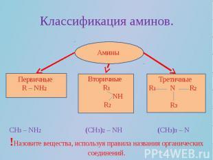 Классификация аминов.