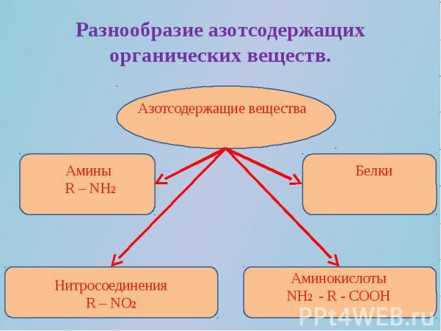 Разнообразие азотсодержащих органических веществ.