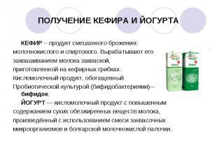 КЕФИР – продукт смешанного брожения: КЕФИР – продукт смешанного брожения: молочн