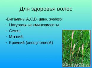 Для здоровья волос -Витамины А,С,В, цинк, железо; Натуральные аминокислоты; Селе