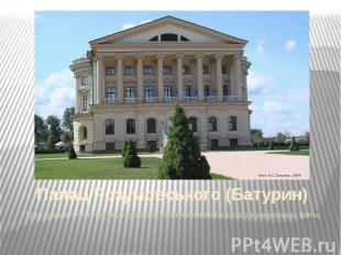 Палац Розумовського (Батурин) Підготувала учениця I курсу фізико-математичного к
