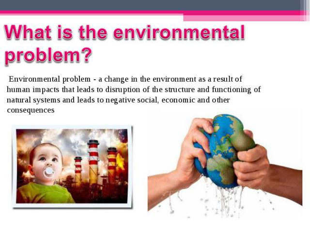 Environmental problem - a change in the environment as a result of human impacts that leads to disruption of the structure and functioning of natural systems and leads to negative social, economic and other consequences