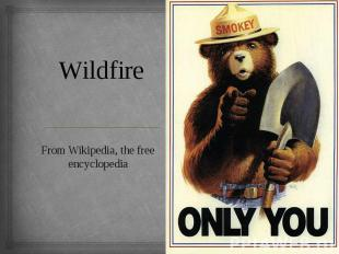 Wildfire From Wikipedia, the free encyclopedia
