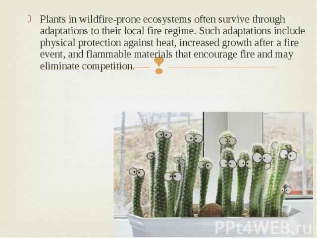 Plants in wildfire-prone ecosystems often survive through adaptations to their local fire regime. Such adaptations include physical protection against heat, increased growth after a fire event, and flammable materials that encourage fire and may eli…