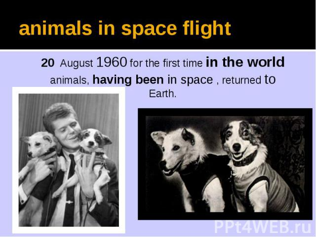 animals in space flight