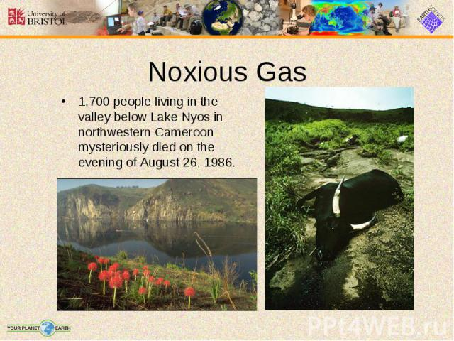 1,700 people living in the valley below Lake Nyos in northwestern Cameroon mysteriously died on the evening of August 26, 1986. 1,700 people living in the valley below Lake Nyos in northwestern Cameroon mysteriously died on the evening of August 26, 1986.