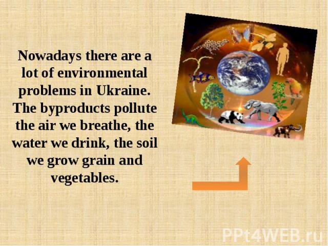 Nowadays there are a lot of environmental problems in Ukraine. The byproducts pollute the air we breathe, the water we drink, the soil we grow grain and vegetables.