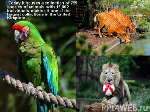 Today it houses a collection of 755 species of animals, with 16,802 individuals,