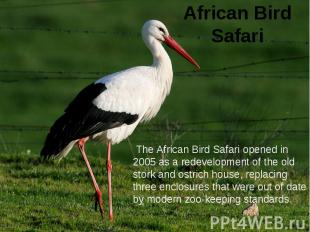 African Bird Safari The African Bird Safari opened in 2005 as a redevelopment of