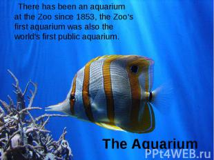 The Aquarium There has been an aquarium at the Zoo since 1853, the Zoo's first a
