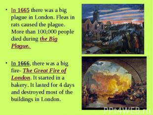 In 1665 there was a big plague in London. Fleas in rats caused the plague. More