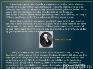 Maria Magdaleana was already a widow and a mother when she met Beethoven's fathe