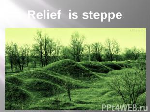 Relief is steppe
