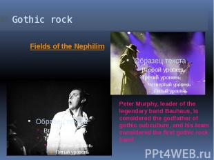 Gothic rock Peter Murphy, leader of the legendary band Bauhaus, is considered th