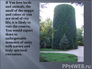 If You love birds and animals, the smell of the steppe and colors or you are tir