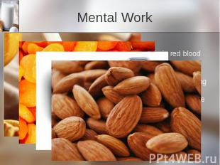 Mental Work Iron Iron helps producehemoglobin, the protein in red blood ce