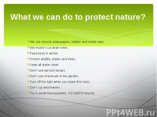 What we can do to protect nature? We can recycle newspapers, bottles and metal c