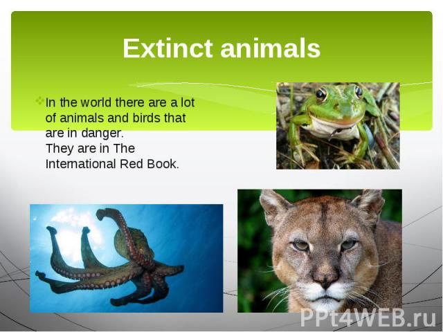 Extinct animals In the world there are a lot of animals and birds that are in danger. They are in The International Red Book.