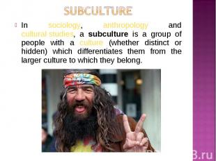 In sociology, anthropology and cultural studies, a subculture is a group of peop